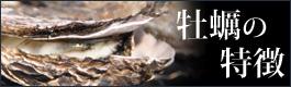 牡蠣の特徴